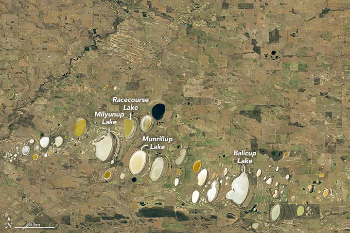 Colorful Salt Lakes in Western Australia