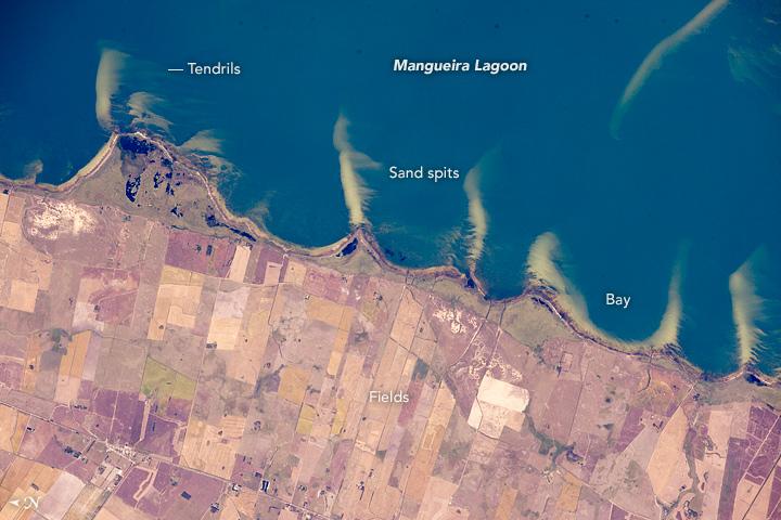 Lagoa Mangueira