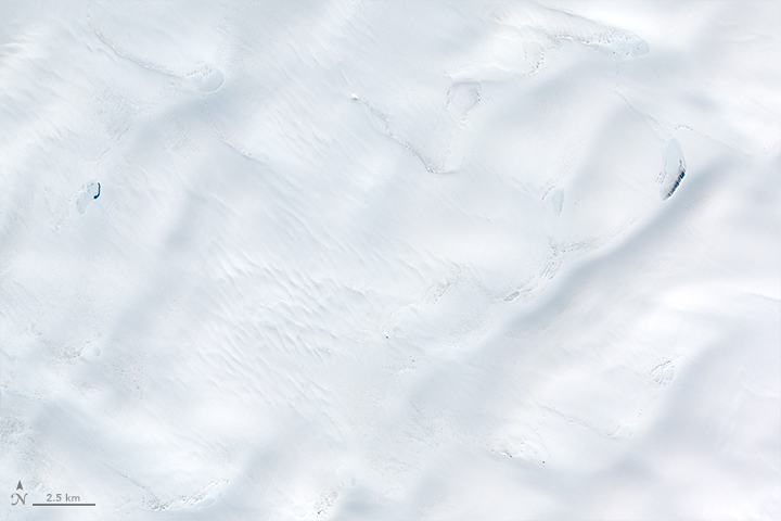 Early Melt on the Greenland Ice Sheet