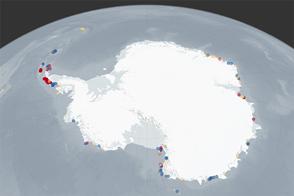 Climate Change May Shift or Shrink Penguin Habitat