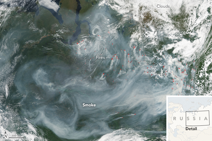 Fires in Northwestern Siberia