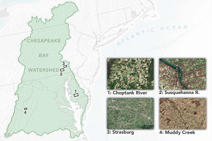 How Farms Affect the Chesapeake Bay's Water