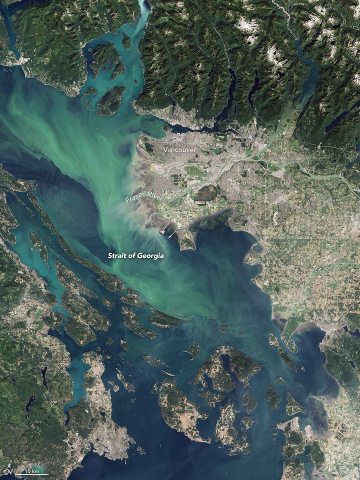 Canadian Waters Teem with Phytoplankton