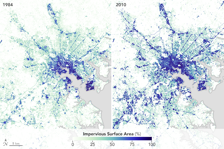 How Cities and Suburbs Affect Chesapeake Bay - related image preview