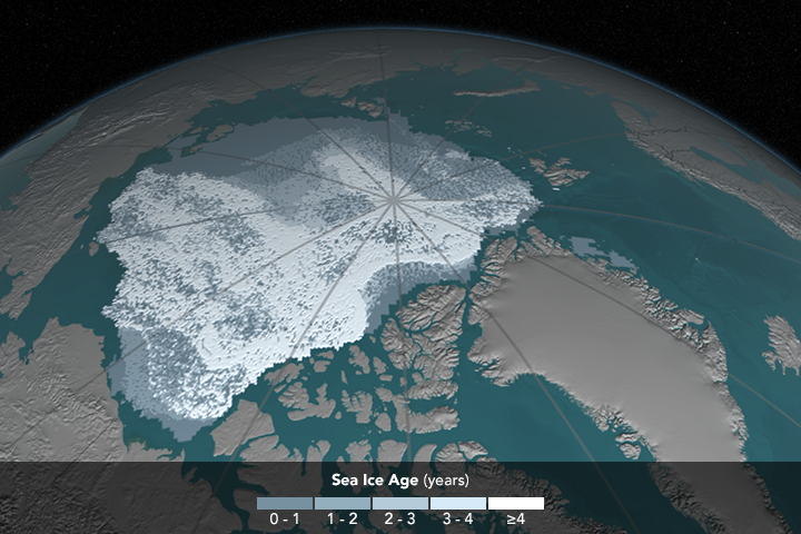 [Image: iceAgeYearly_p30_0000.png]
