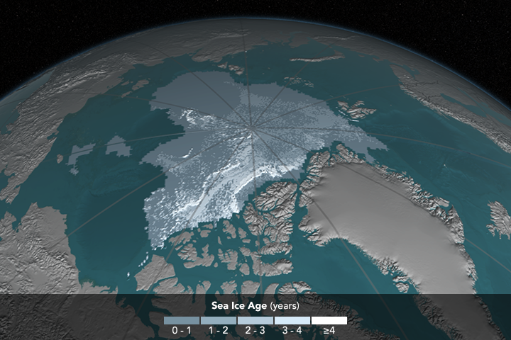 [Image: iceAgeYearly_p30_1168.png]