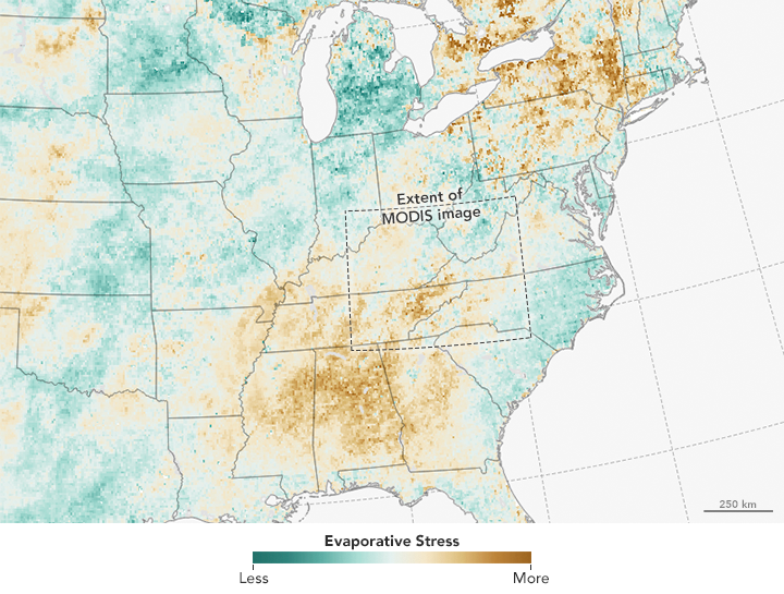 Drought and Fire in the Southeast - related image preview