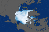 Growing Pains: Arctic Sea Ice at Record Lows