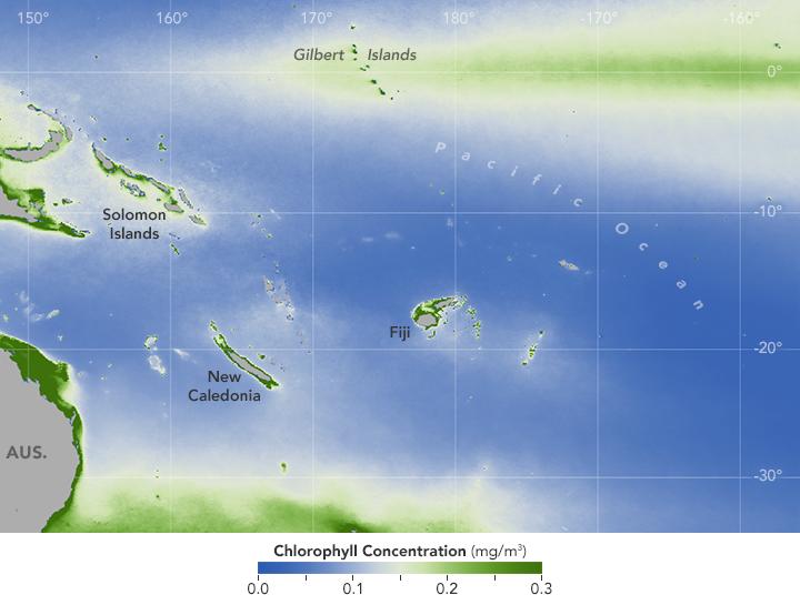 Phytoplankton Enlivens Swaths of Barren Ocean