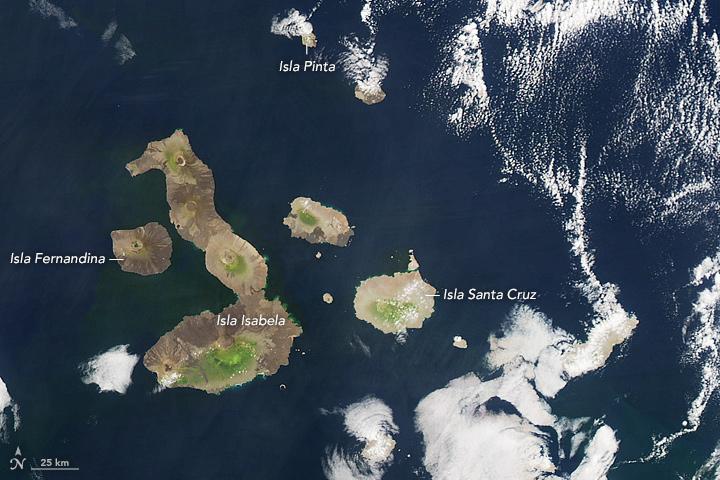 The Galapagos Archipelago