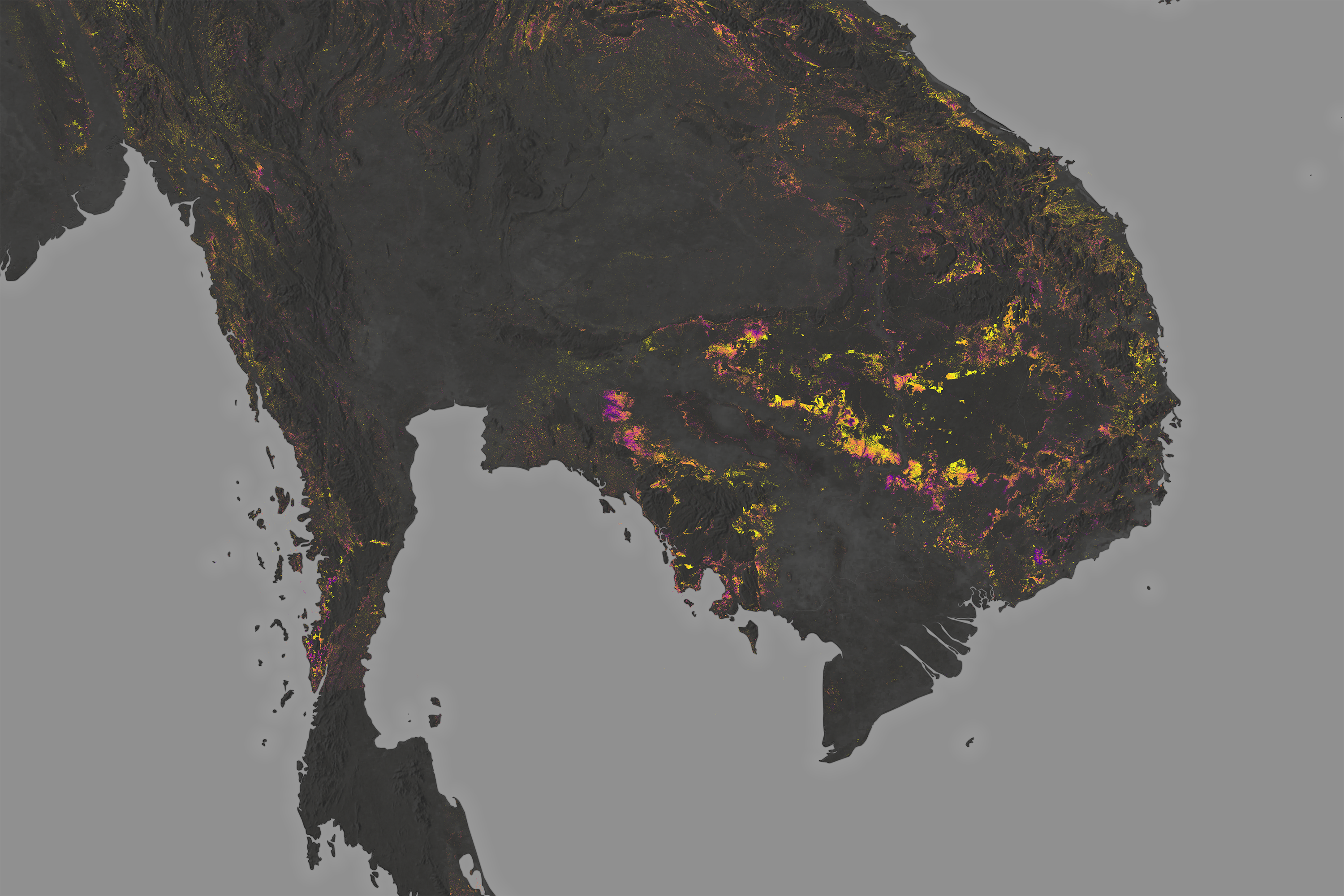 Cambodia's Forests Are Disappearing - related image preview