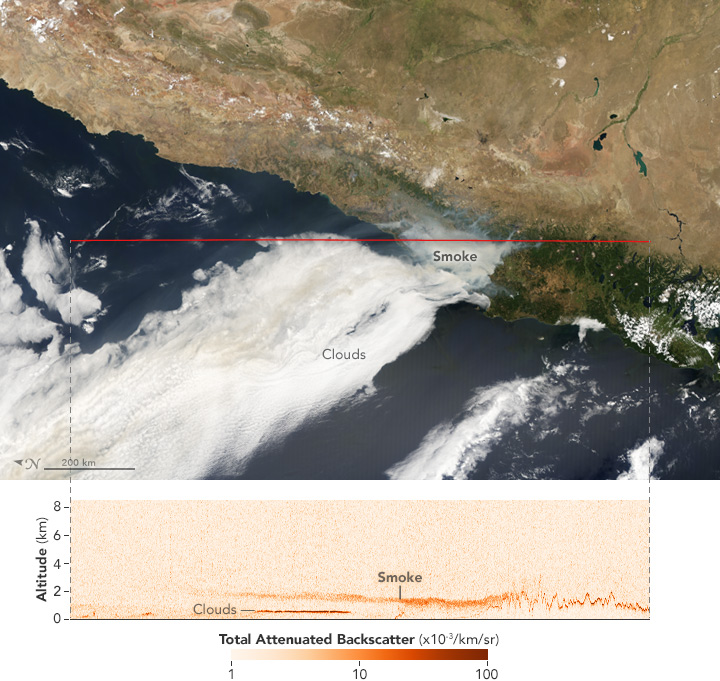 Satellites Capture Different Views of Devastating Fires in Chile - related image preview