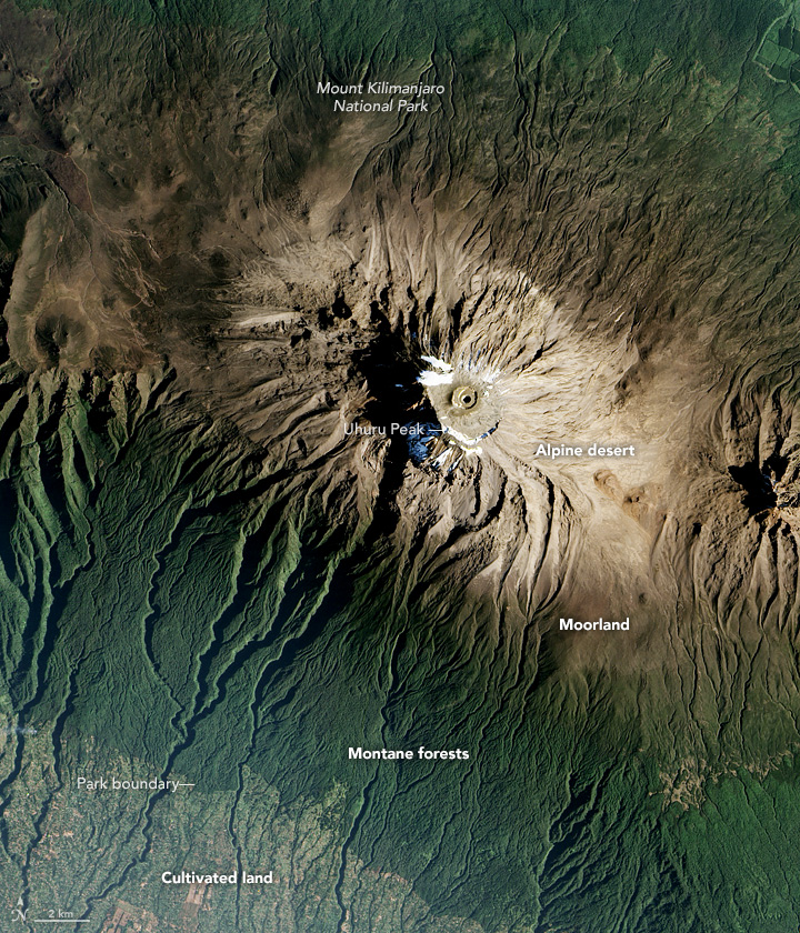 The Zones of Kilimanjaro