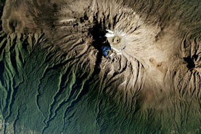 The Zones of Kilimanjaro - selected image