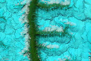 The Alphabet from Orbit: Letter F - selected image