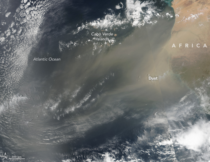 African Dust Aloft