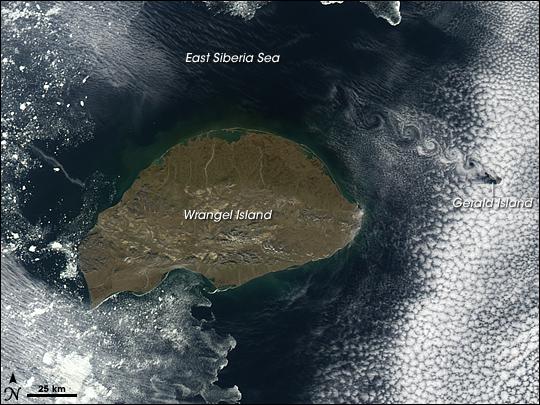 Wrangel Island, Russia