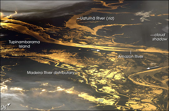 Sunglint on the Amazon River, Brazil