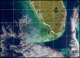 Black Water off the Gulf Coast of Florida - selected image