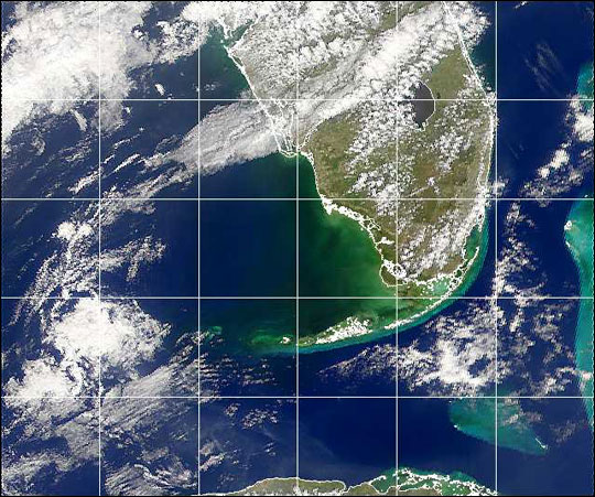 Black Water off the Gulf Coast of Florida - related image preview