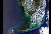 Black Water off the Gulf Coast of Florida