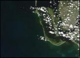 Black Water off the Gulf Coast of Florida