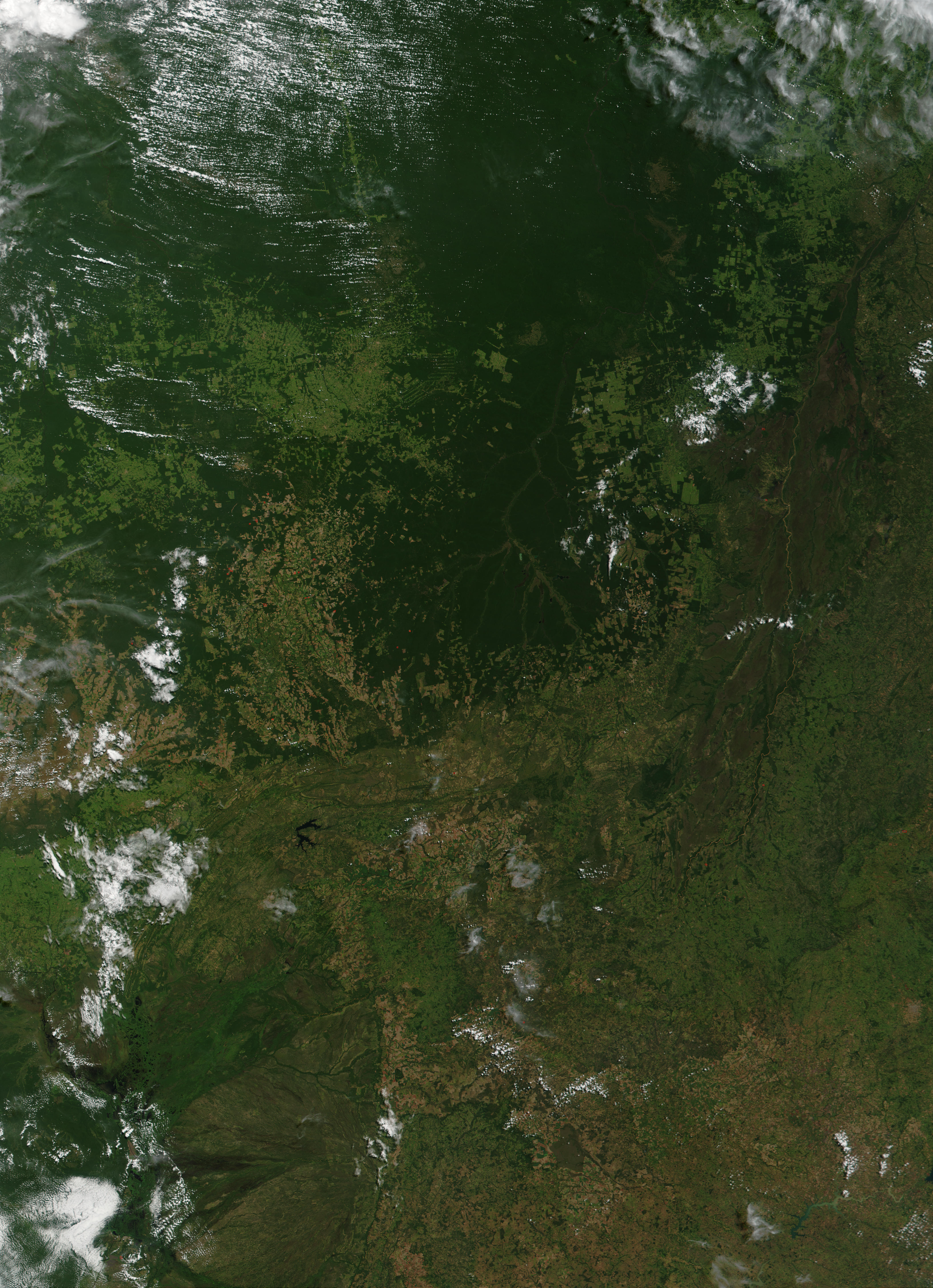 hazards of deforestation Brazil's economy suffers consequences of amazon deforestation blog entry by antonio pasolini march 26, 2015 - 4:03pm thursday, march 26, 2015 - 4:00pm.