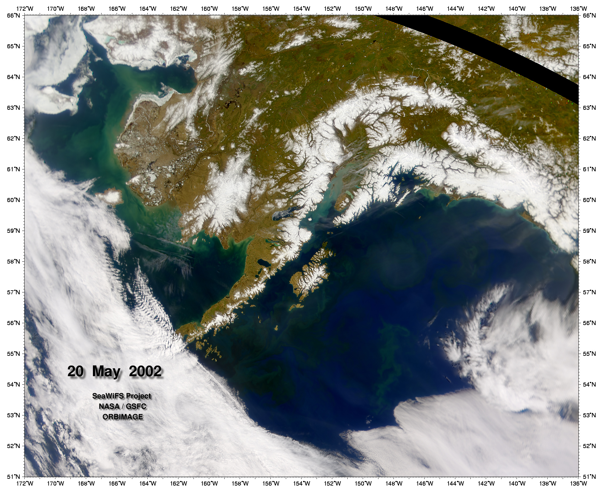 Phytoplankton in the Gulf of Alaska - related image preview