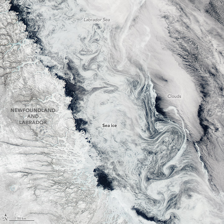 Sea Ice Swirls in the Labrador Sea - related image preview