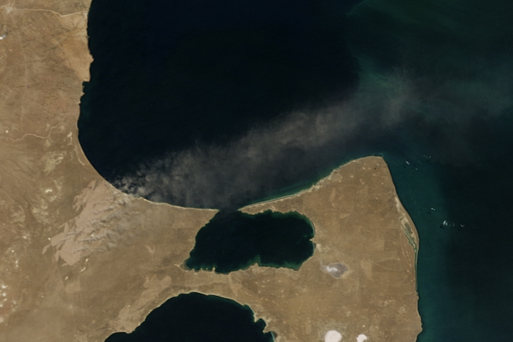 After Patagonian Fires, A Scar Remains