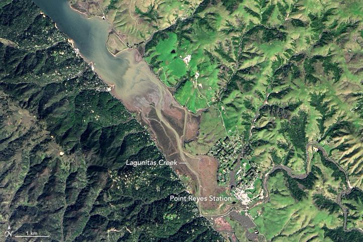 Where Tectonic Plates Go for a Swim