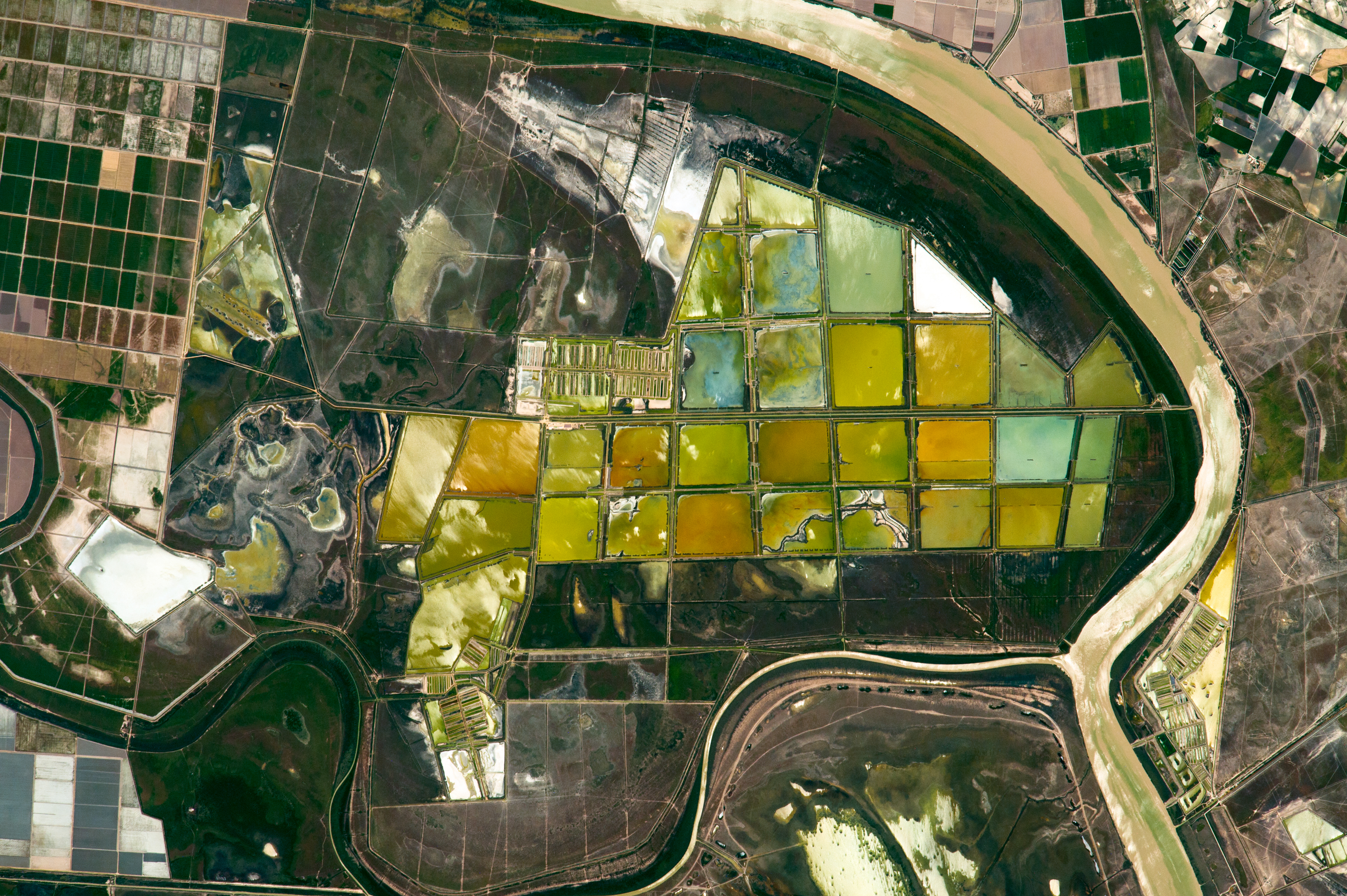 Fish Ponds and Rice Fields, Lower Guadalquivir River - related image preview