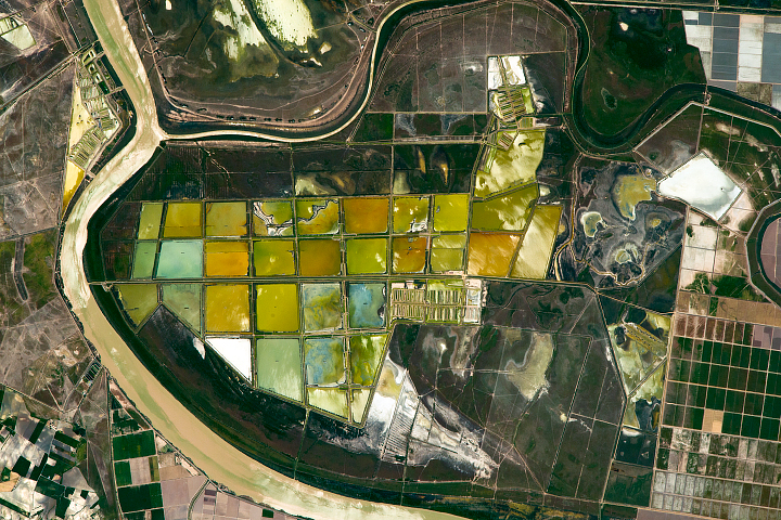 Fish Ponds and Rice Fields, Lower Guadalquivir River - selected image