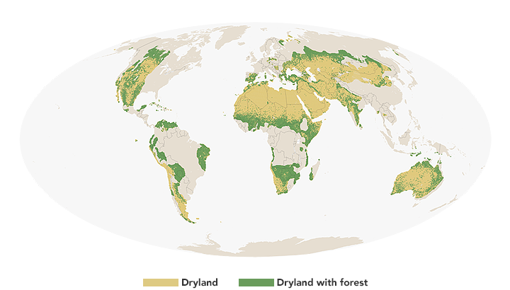 Measuring The Earth S Dry Forests