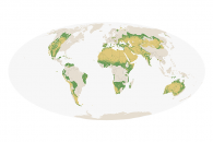 Measuring the Earth's Dry Forests