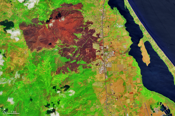 Fire Chars Northern Corsica - related image preview