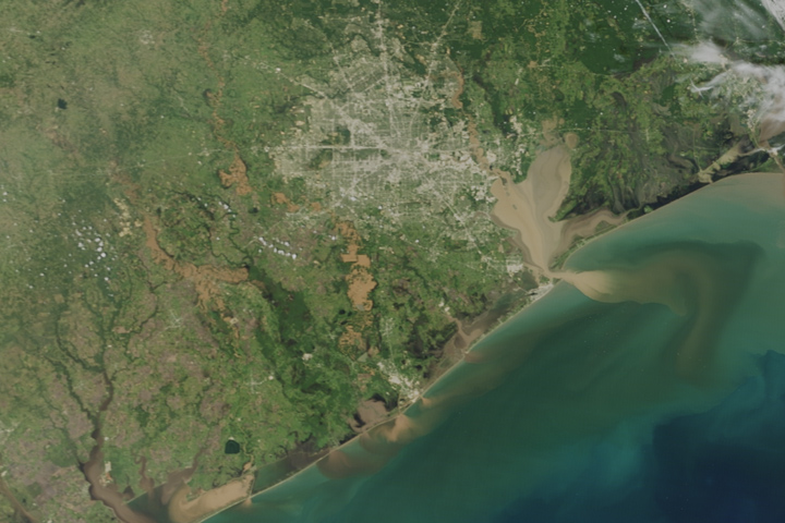 Texas Waters Run Brown after Harvey - selected image