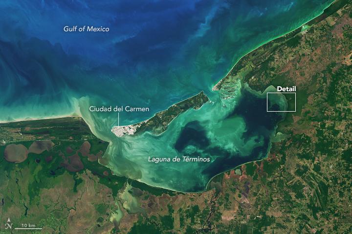 Laguna de Términos