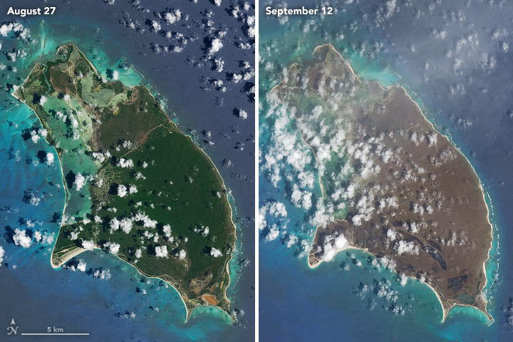 NASA: Barbuda and Saint Barthélemy Browned by Irma