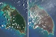 Barbuda and Saint Barthélemy Browned by Irma