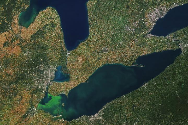 Bloom Persists in Lake Erie