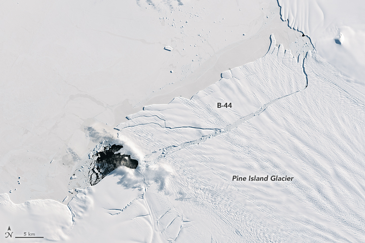 Pine Island Glacier Births New 'Berg - related image preview