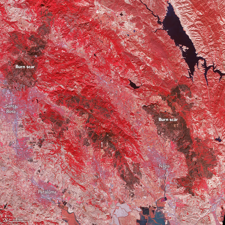 Burn Scars on California's Wine Country