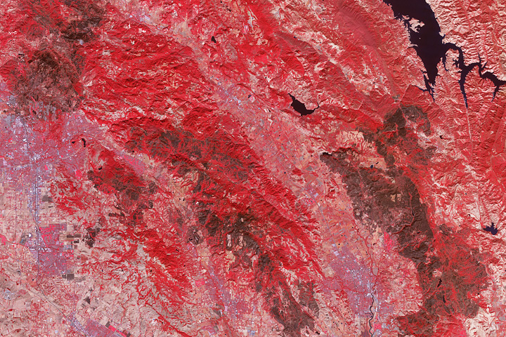 Burn Scars on California's Wine Country - selected image