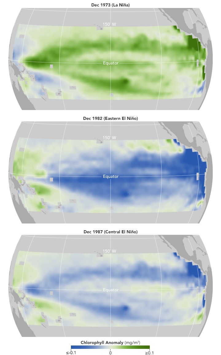 Reconstructing the Recent History of Pacific Ocean Life