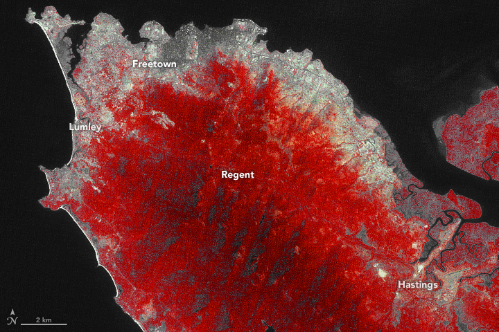 A Growing City and a Deadly Landslide