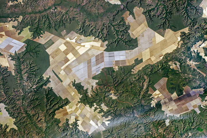 Agricultural Fields and Flat Lands, Brazil - selected image