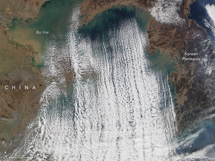 Cloud Streets Over the Yellow Sea