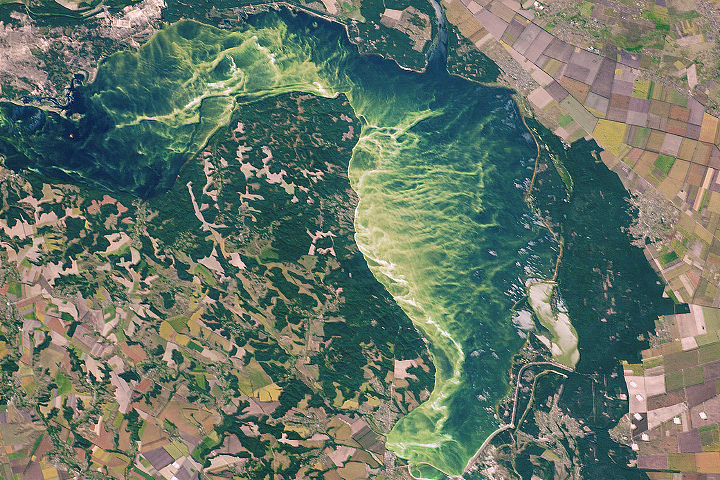 Agriculture Marks the Landscape in Central Ukraine - selected image