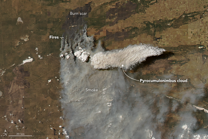 A Fire Cloud in Argentina